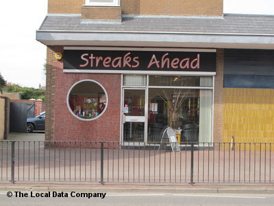 Streaks Ahead Mold