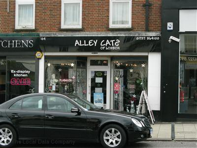 Alley Cats St. Albans