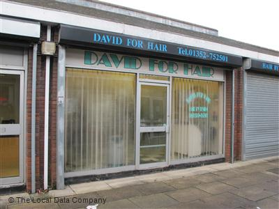 David For Hair Mold